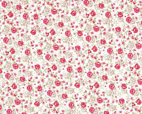 coton-bio-ecru-roses