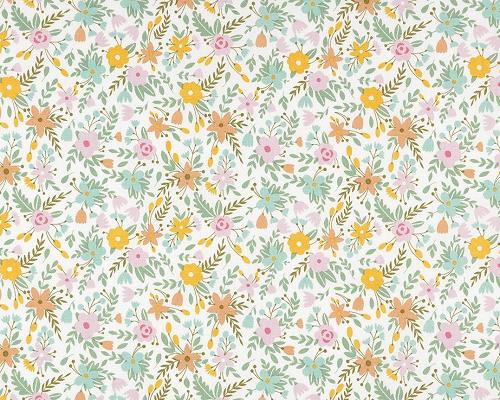coton-champ-fleuri