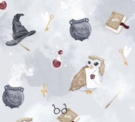 coton-ecole-de-magie