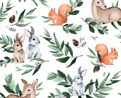 coton-faon-lapins-ecureils