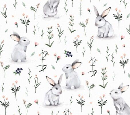 coton-lapins