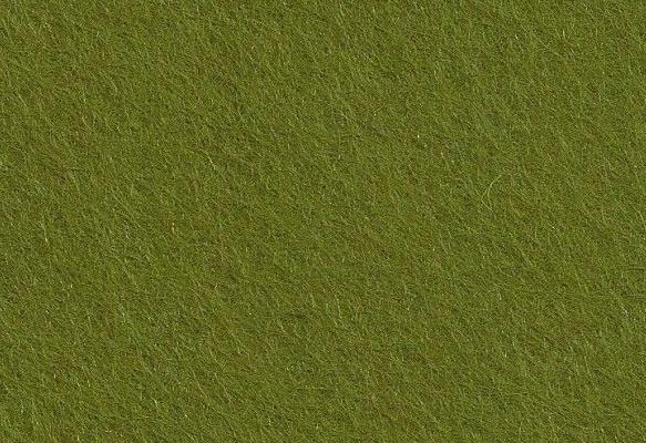 vert-lichen